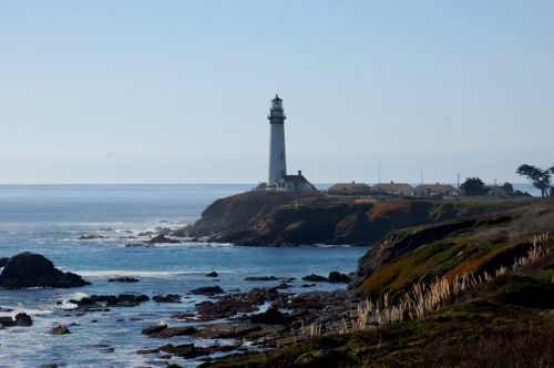 Just to the north of Gazo is  Pigeon Pt and its subsequent self named light.  Pigeon Pt is also one of the biggest seal rookeries in California.