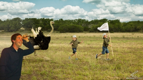 Kooky taking out prehistoric birds and little kids in one fell swoop.