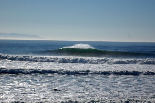 Years ago I scored Santa Cruz with Mauriello.  This was Middle Peak at Steamer Lane.  On this swell it could have been just as good if not better