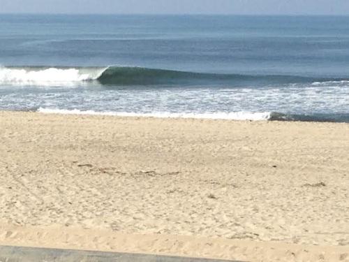 SurfersKnoll22514
