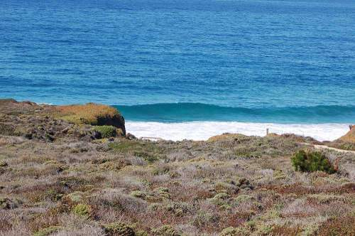 My first view of Garrapatta State Beach from the road.  It looked like some epic West Australian Beach Break.