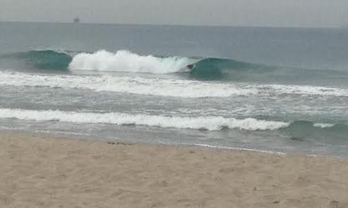 Shores9415