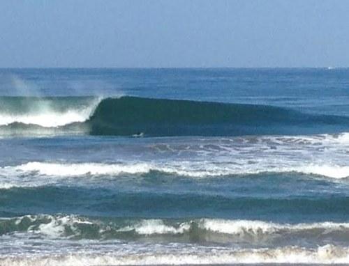Shores9515