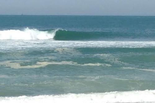 Shores41916